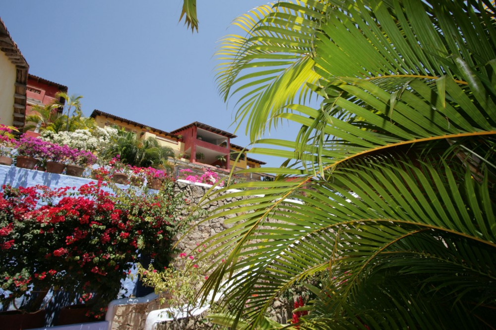 Casitas de las Flores, Costa Careyes